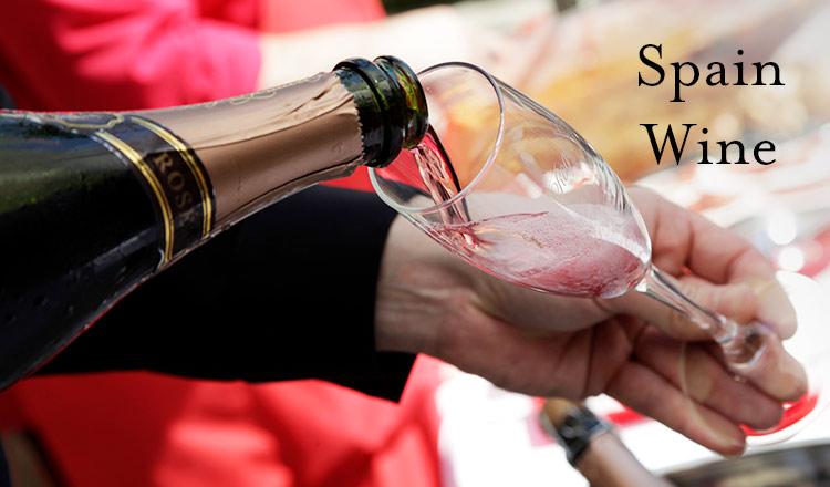 Spain Wine -情熱の国が産み出すバラエティ豊かなワイン-
