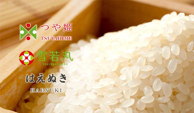 精米をすぐにお届け!お米農家直送   雪若丸・つや姫・はえぬき  -特別栽培米-