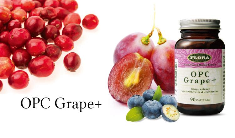 ポリフェノールの力で『錆びない』カラダに-OPC Grape⁺-